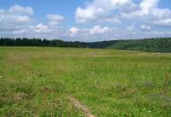Львівщина: ціни на землю продовжують рости